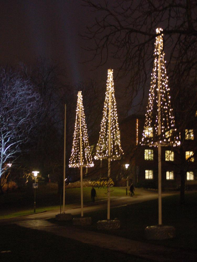 Nu tändas tusen juleljus i Göteborg